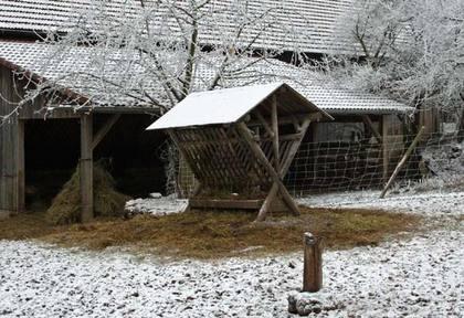Bilda von : Dezember 2007
